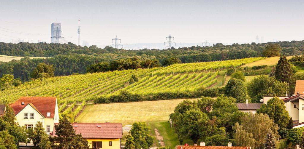 Über den Dächern von Hagenbrunn