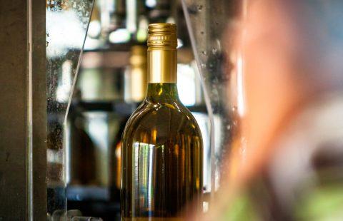 Flaschenfüllen_Weingut-Gilg_Hagenbrunn_Weinviertel_CR_GILG_2018_2944