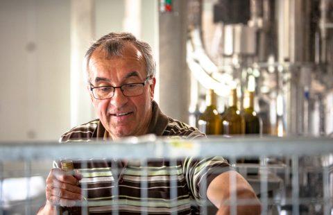 Flaschenfüllen_Weingut-Gilg_Hagenbrunn_Weinviertel_CR_GILG_2018_2959