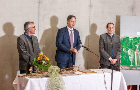 beste Weine aus Hagenbrunn